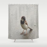 sparrow Shower Curtains featuring Sparrow by Lady Tanya bleudragon