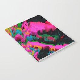 Sinewe Notebook