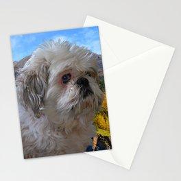 """Denali"" - Lap Dog Stationery Cards"