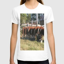All Lined Up. T-shirt
