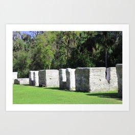 Kingsley Plantation Slave Cabins Art Print