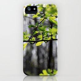 Waldlichter iPhone Case