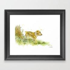 Dog Strolling Framed Art Print