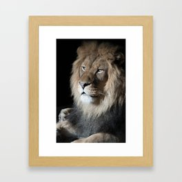 Portrait of a King Framed Art Print