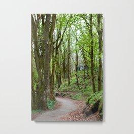 Wooded Path Metal Print