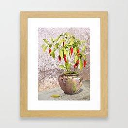 Thai Peppers Framed Art Print