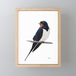 Barn swallow, Bird painting Framed Mini Art Print