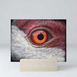 eye of the sandhill crane Mini Art Print