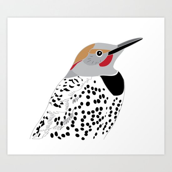 Northern Flicker Art Print