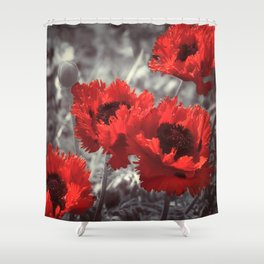 Big Red Watercolor Poppies on Grey Background Shower Curtain