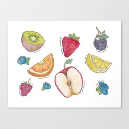 Fruit Field Guide Canvas Print