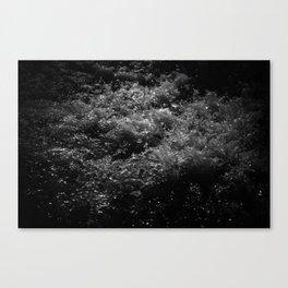 The Splash Canvas Print