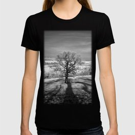 Lone tree over the East Somerset Railway T-shirt