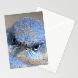 Watercolor Bird, Mountain Bluebird 07, Estes Park, Colorado, A Bit of Sass! Stationery Cards