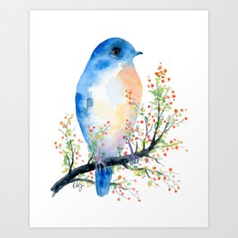 Watercolor bluebird on Berry Branch Art Print