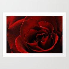 lovers choice Art Print
