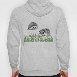 Hedgehogs print Hoody