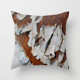 Cracking Rust 1 Throw Pillow