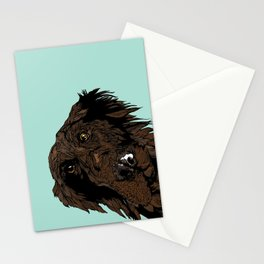 Flatcoated Stationery Cards