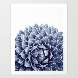 Succulent splendour - chambray Art Print
