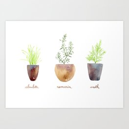 Chives, dill and rosemary Art Print