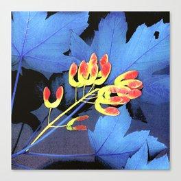 Blue Maple Leaf Canvas Print