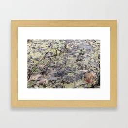 Camouflage texture Framed Art Print