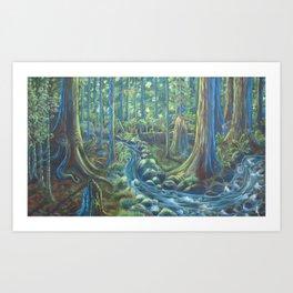 Pacific Rainforest  Art Print