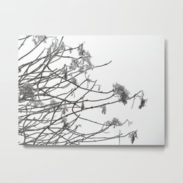 Frostbite #1 Metal Print