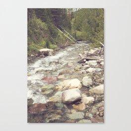 Pristine Canvas Print