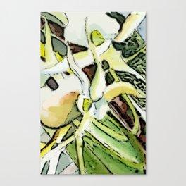 Darwins Orchid Canvas Print