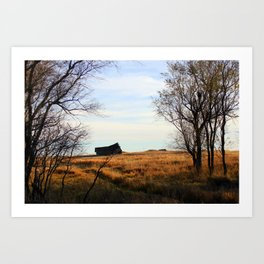 Seasoned Shed Art Print