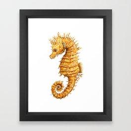 Sea horse, Horse of the seas, Seahorse beauty Framed Art Print