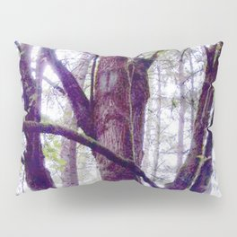 Wise Ones Pillow Sham
