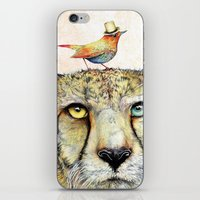 cheetah iPhone & iPod Skins featuring Cheetah by dogooder