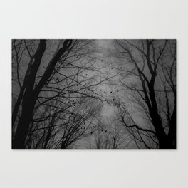 Tree of black Canvas Print