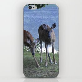 Grazing Deer iPhone Skin