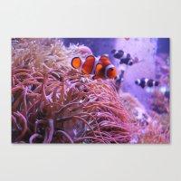 nemo Canvas Prints featuring Nemo by Joanna Dickinson