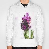 lavender Hoodies featuring Lavender by Carmen Lai Graphics