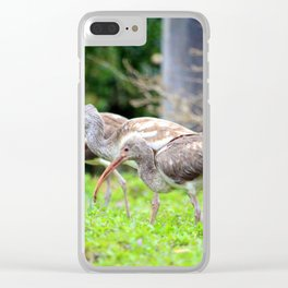 We Have Blue Eyes Clear iPhone Case