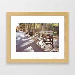 New York City Park Bench Moments Framed Art Print