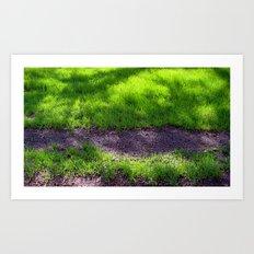 Shaded Grass Art Print