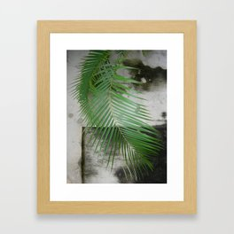 Backdrop Framed Art Print