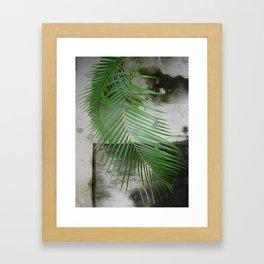 Backdrop Framed Art Print