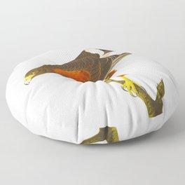 Louisiana Hawk Floor Pillow