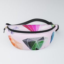 Crystal and Gemstones Vol 2 Fanny Pack