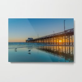 Newport Sunset Seagulls Metal Print