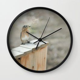 Build Your Nest Wall Clock
