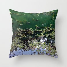 Afternoon At The Pond Throw Pillow