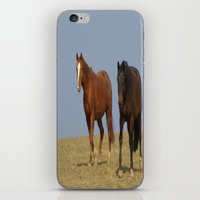 horses iPhone & iPod Skins featuring horses by Laake-Photos